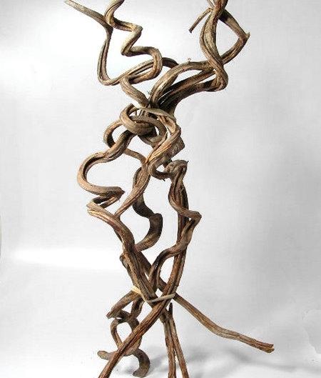 Spiral Vine